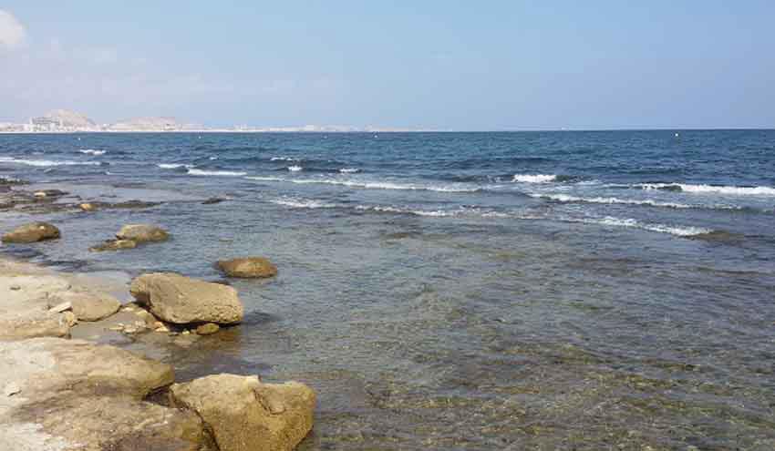 La Universidad de Alicante evalúa el cambio climático en áreas marinas protegidas del levante español