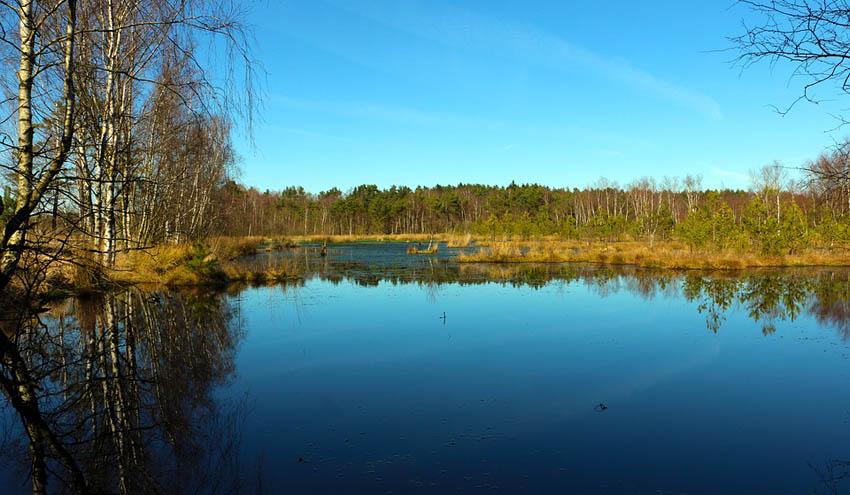 WWF demanda a la UE recuperar la salud de los ríos, humedales y acuíferos
