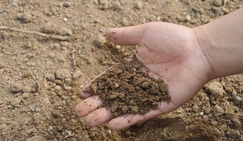 Eurecat participa en un proceso de compra pública para avanzar en la descontaminación de suelos