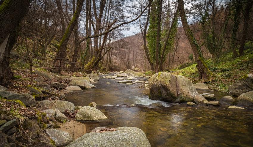 El Cambio Climático obliga a una gestión integrada y colaborativa de las cuencas hidrográficas
