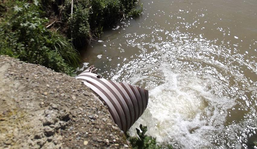 Fertilizantes y aguas residuales tratadas, principales fuentes de nitratos en las aguas vertientes a Doñana