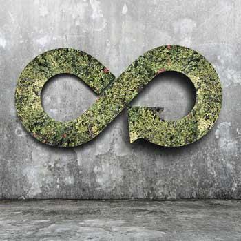 Innovación tecnológica: pilar de la economía circular de los residuos