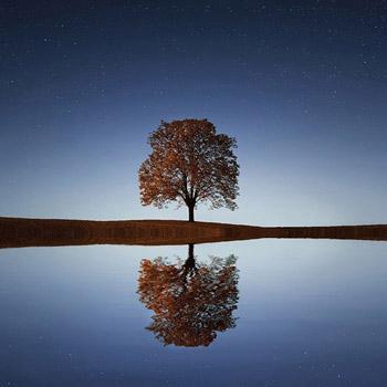 Gestión del agua y adaptación al cambio climático